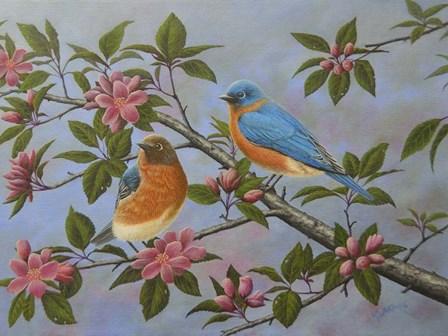 Bluebirds by Robert Wavra art print