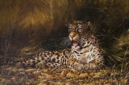 Leopard by Michael Jackson art print