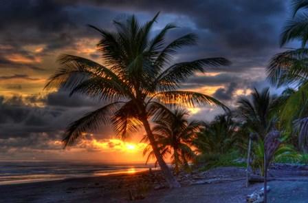 Tropical Sunset by Robert Kaler art print
