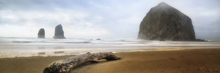 From Cannon Beach II by David Drost art print