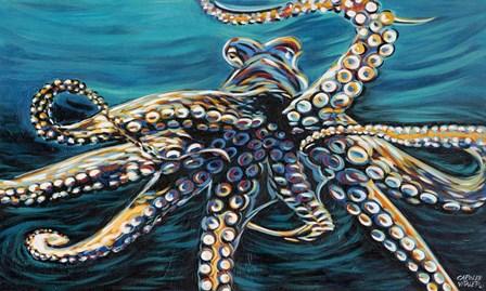 Wild Octopus II by Carolee Vitaletti art print