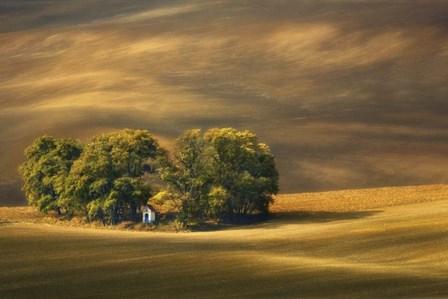 Moravian Fields by Krzysztof Browko art print