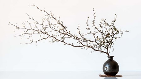 Vase And Branch by Prbimages art print