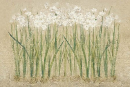 Narcissus Row Cool by Cheri Blum art print