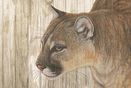 Mountain Sentry on Wood by Jacquie Vaux art print