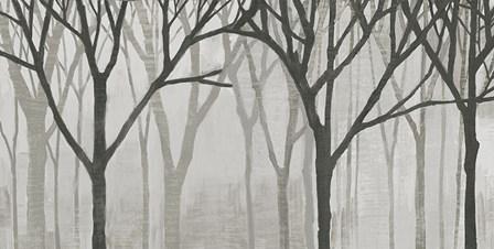 Spring Trees Greystone IV by Kathrine Lovell art print