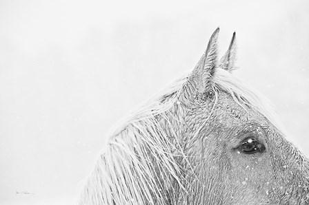 Snow Daze I Crop by Lisa Cueman art print