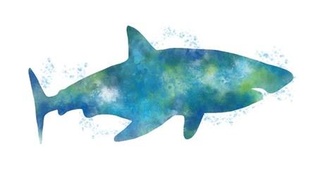 Watercolor Shark III by Linda Woods art print