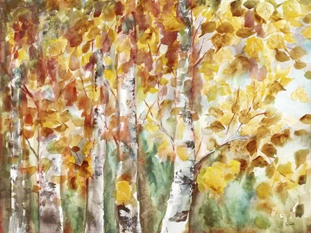 Watercolor Fall Aspens by Tre Sorelle Studios art print