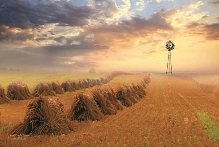 Amish Country Sunrise by Lori Deiter art print
