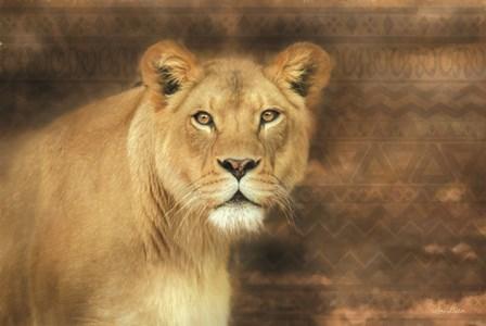 Tribal Lioness by Lori Deiter art print
