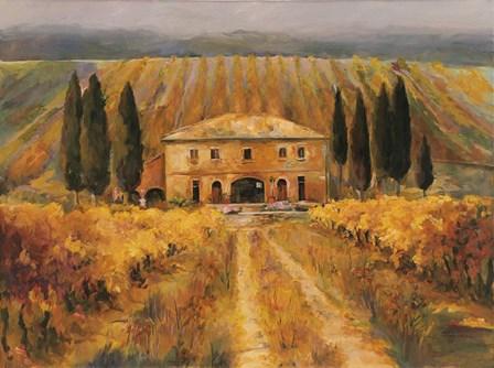 Toscana Vigna Special by Marilyn Hageman art print