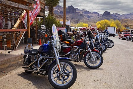 Rt 66 Fun Run Oatman Motorcycles by Mike Jones Photo art print