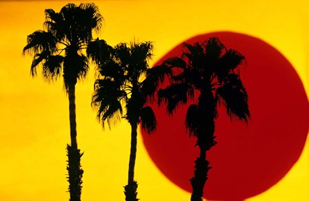 1990S 3 Silhouetted Palm Trees by Vintage PI art print