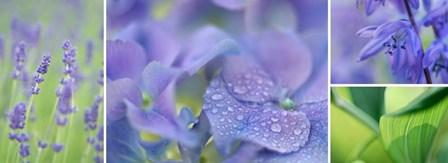 The Blue Garden by Cora Niele art print