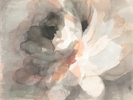 Abstract Peony by Danhui Nai art print