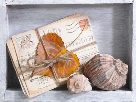 Letters & Shells by A.V. Art art print