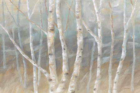 Silver Birch Landscape by Cynthia Coulter art print