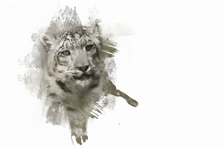 Expressions Snow Leopard by Jai Johnson art print