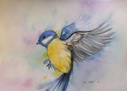 Bluebird by Angie Livingstone art print