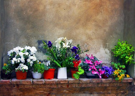 Wall Flowers by Ata Alishahi art print