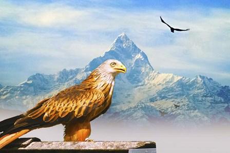 Bird Collection 34 by Ata Alishahi art print