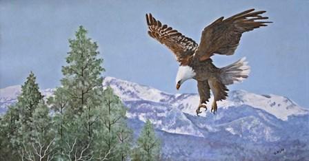 Soaring over Snowy Peaks by Carol J Rupp art print