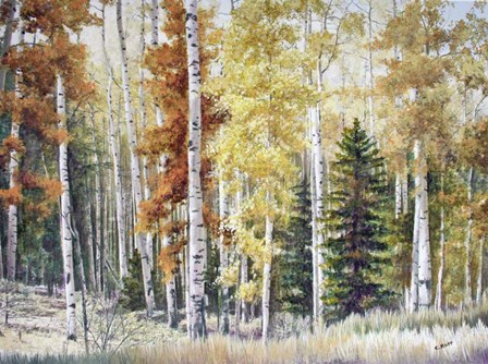 Angel Fire Aspens by Carol J Rupp art print