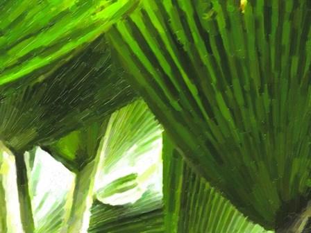 Painted Ferns I by Graffi*tee Studios art print