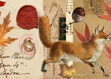Autumn Fox by Sandy Lloyd art print