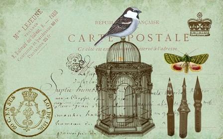 Carte De Visit Bird by Sandy Lloyd art print