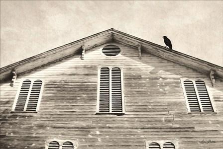Fort Halifax Crow by Lori Deiter art print