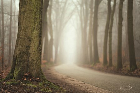 Focus on What You Want by Martin Podt art print
