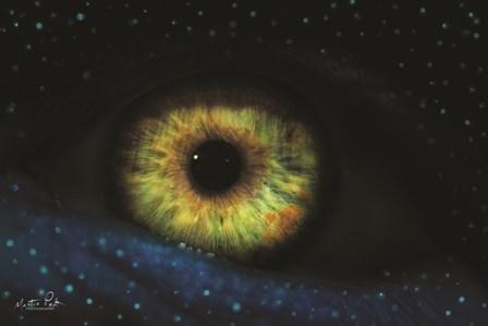 The Eye by Martin Podt art print