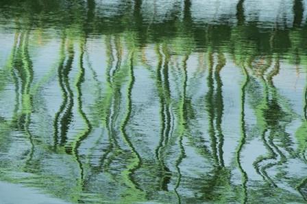 Green Bridge Reflection in Water by Cindy Miller Hopkins / Danita Delimont art print