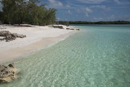 Picard Island White Sand Beach, Seychelles by Cindy Miller Hopkins / Danita Delimont art print