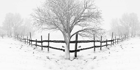 Snowy Landscape by Ata Alishahi art print