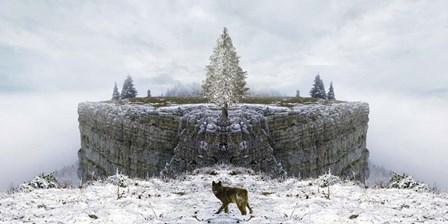 Lone Wolf by Ata Alishahi art print