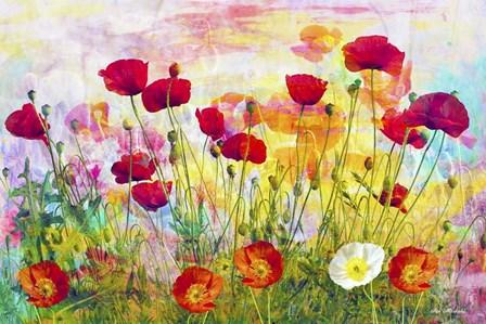 Poppies by Ata Alishahi art print
