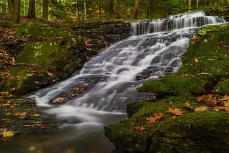Abbey Pond Cascades by Brenda Petrella Photography LLC art print