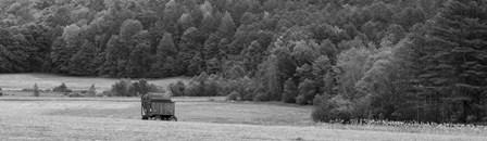 Hay Wagon by Brenda Petrella Photography LLC art print