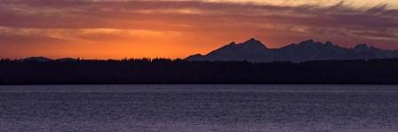 Olympic Mountain Sunset by Brenda Petrella Photography LLC art print