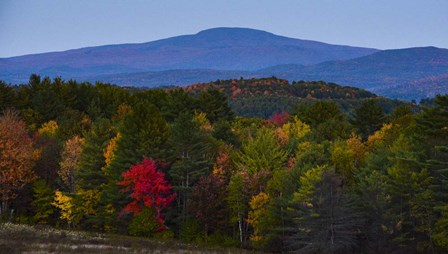 Smarts Mountain In Autumn by Brenda Petrella Photography LLC art print