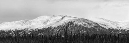 Snowscape by Brenda Petrella Photography LLC art print
