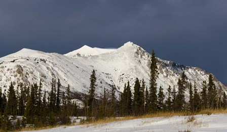 Stormy Peak by Brenda Petrella Photography LLC art print
