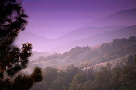 Misty Valley by Ramona Murdock art print