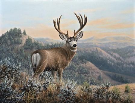 Western Monarch by Chuck Black art print