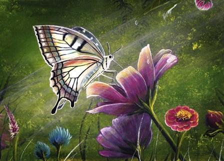 Butterfly by Greg Farrugia art print