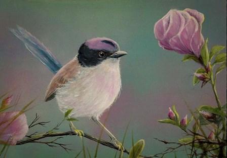 Purple Crowned Fairy Wren by Greg Farrugia art print