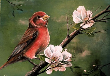 Red Finch by Greg Farrugia art print